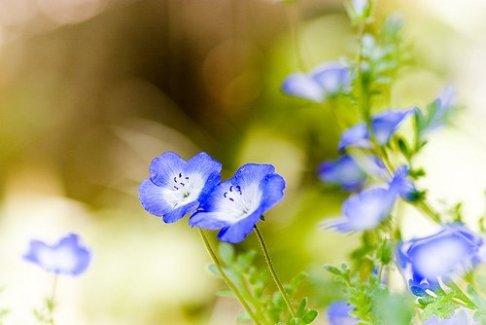 心情不是人生的全部,却能左右人生的全部!