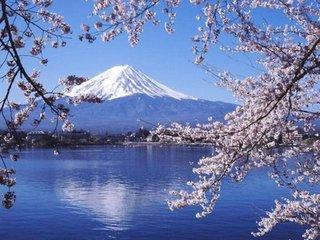 在日本造假意味着什么?