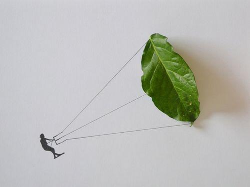 一人一叶一片舟,叶子上的精致世界