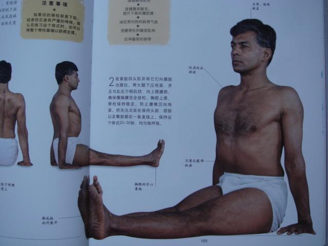 艾杨格推荐的23个瑜伽经典体式
