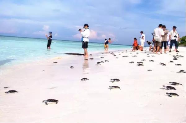 来普吉岛必做的9件事,你一共完成了几个?