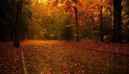 秋已深,请添衣!